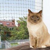 Предпазна мрежа за котки  - 44291 44293 44295 44292