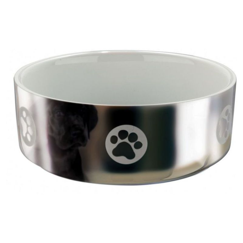 Купа- /ceramik/ dog